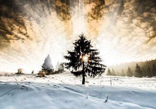 This is a painting of a tree and snowy feeling. It gives out emptiness but still it is satisfying to see the sun in the middle of the tree as it looks like a heart shining through.